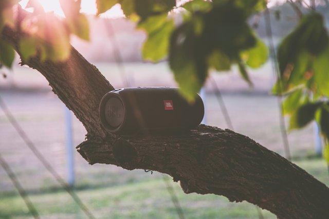 best wireless speakers