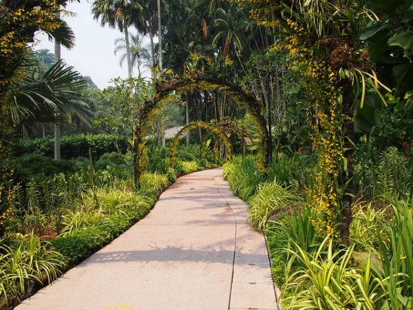 hidden instagram worthy places singapore spots botanic gardens