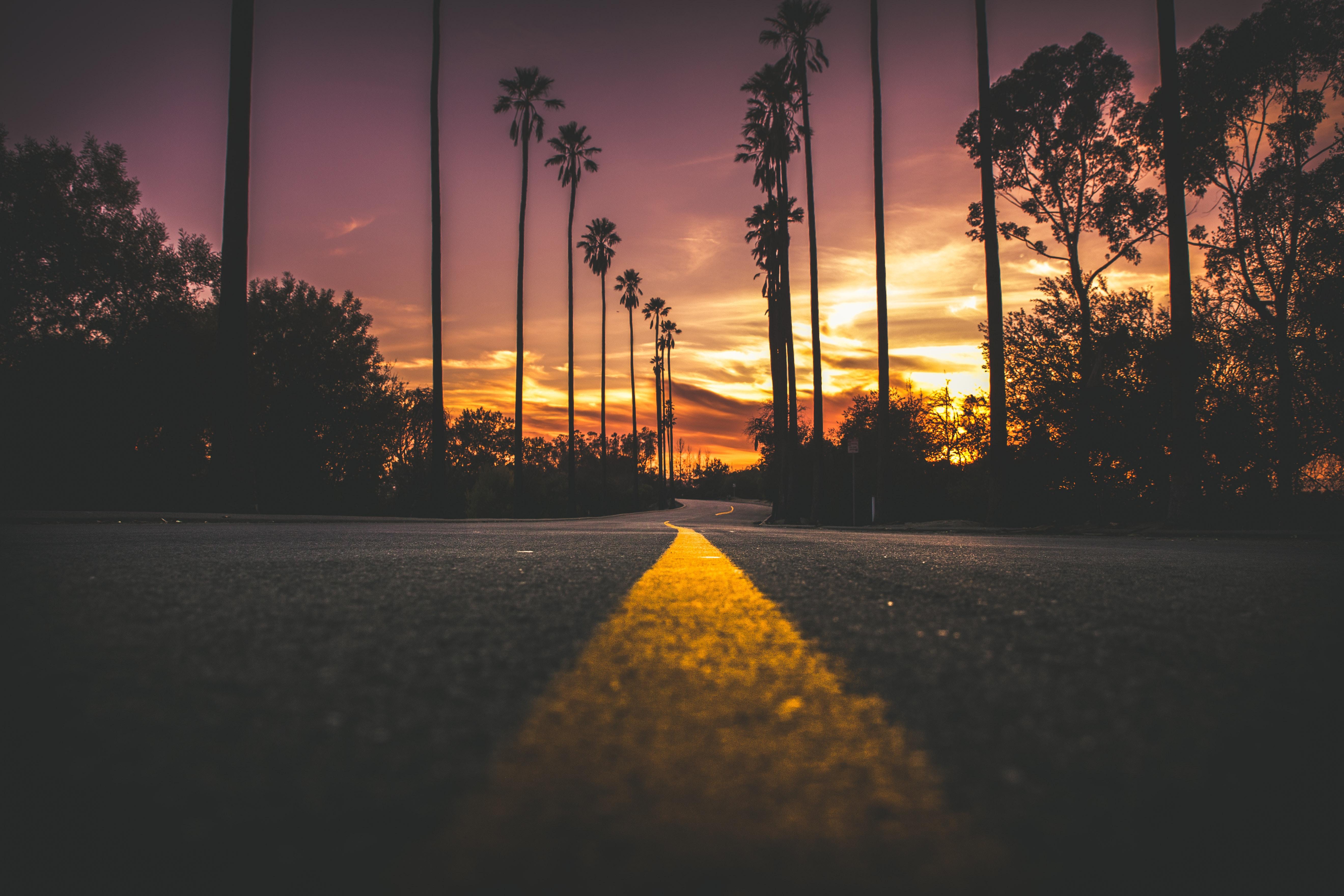 glow in the dark road