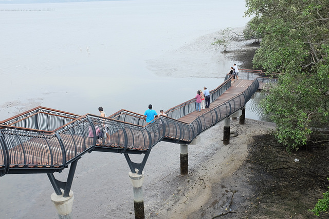 Hiking Trails Singapore Sungei Buloh Coastal Boardwalk