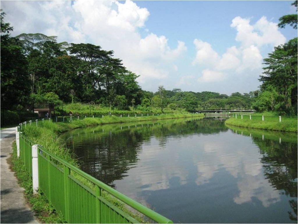 Springleaf Nature Park Stargazing in Singapore