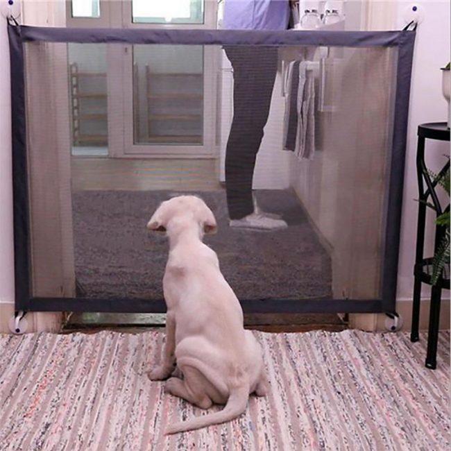 pet gate dog kitchen