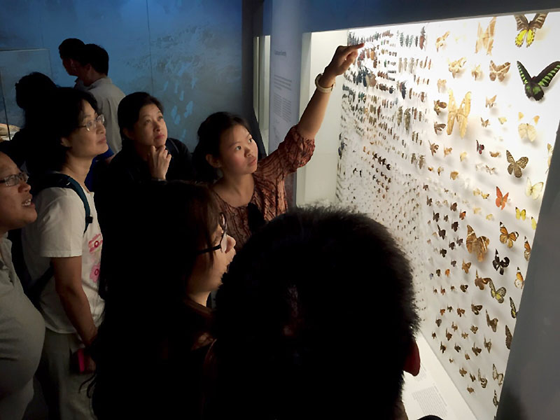 lee kong chian history museum best museums in singapore