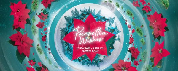 christmas gift experience singapore activty gardens by the bay poinsettia wishes floral display