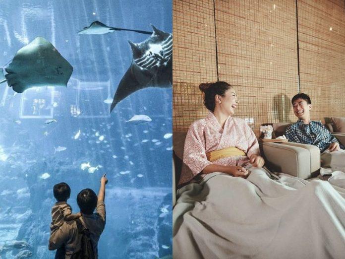 christmas gift experience singapore activity sea aquarium yunomori onsen spa