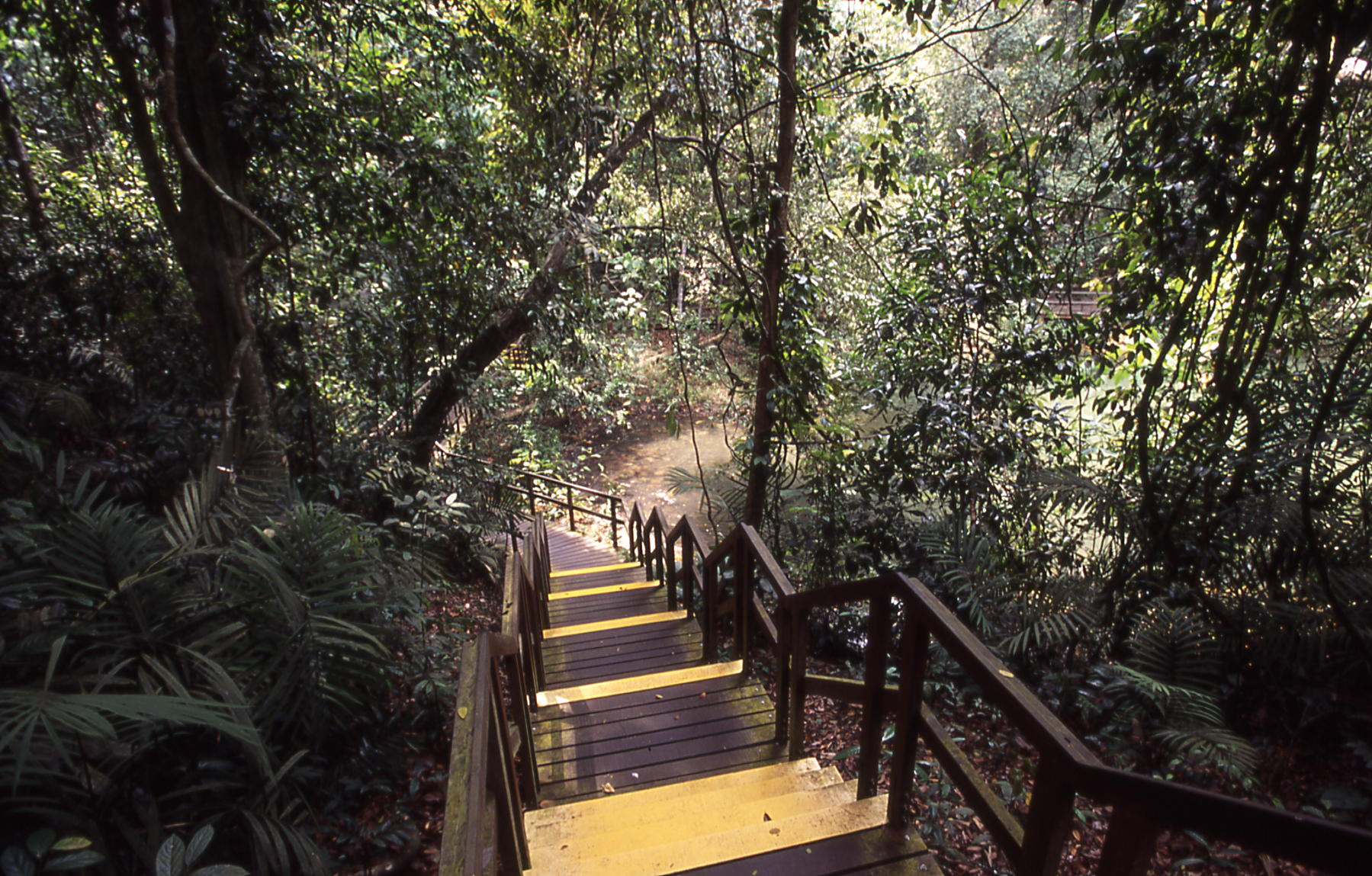 hiking couple activities singapore
