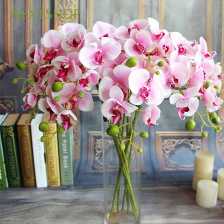 pink orchid vase valentines day flower singapore