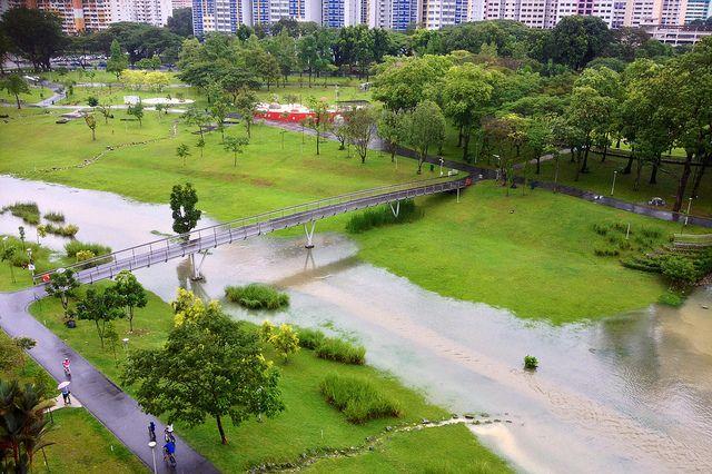 cycling singapore bishan ang mo kio park bridge