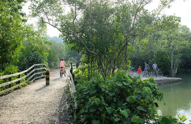 cycling singapore pulau ubin bike trail