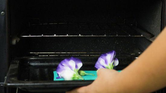 Flower in appliance