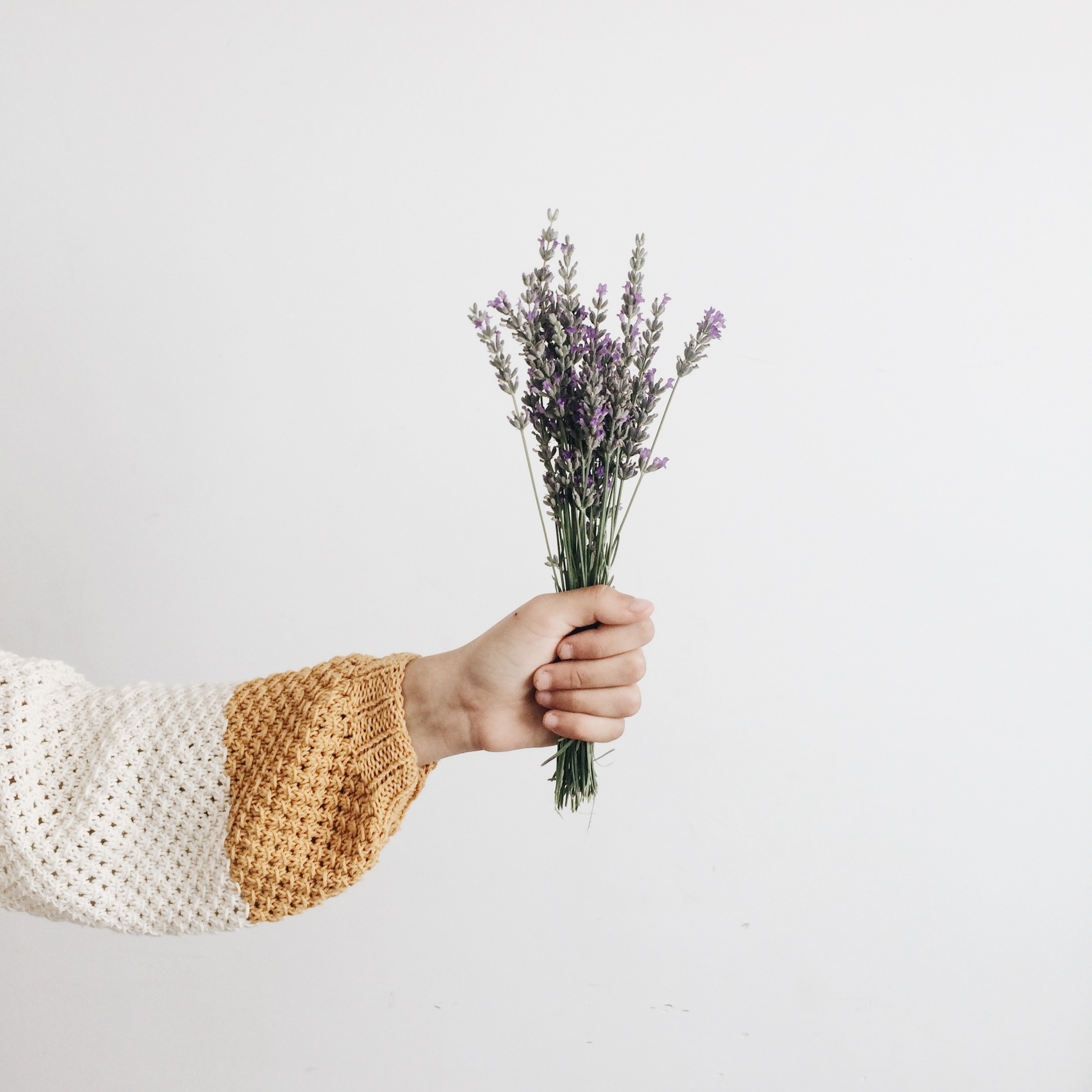 lavender aromatherapy best essential oil