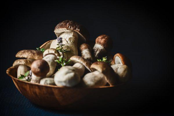 mushroom vitamin b3 best vitamins for skin