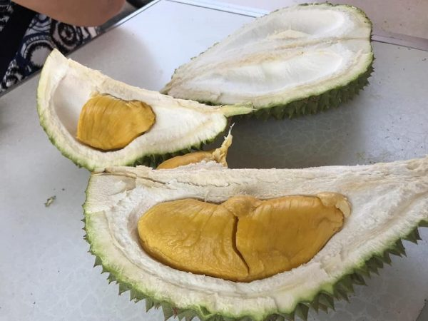 durian delivery singapore just durian online order