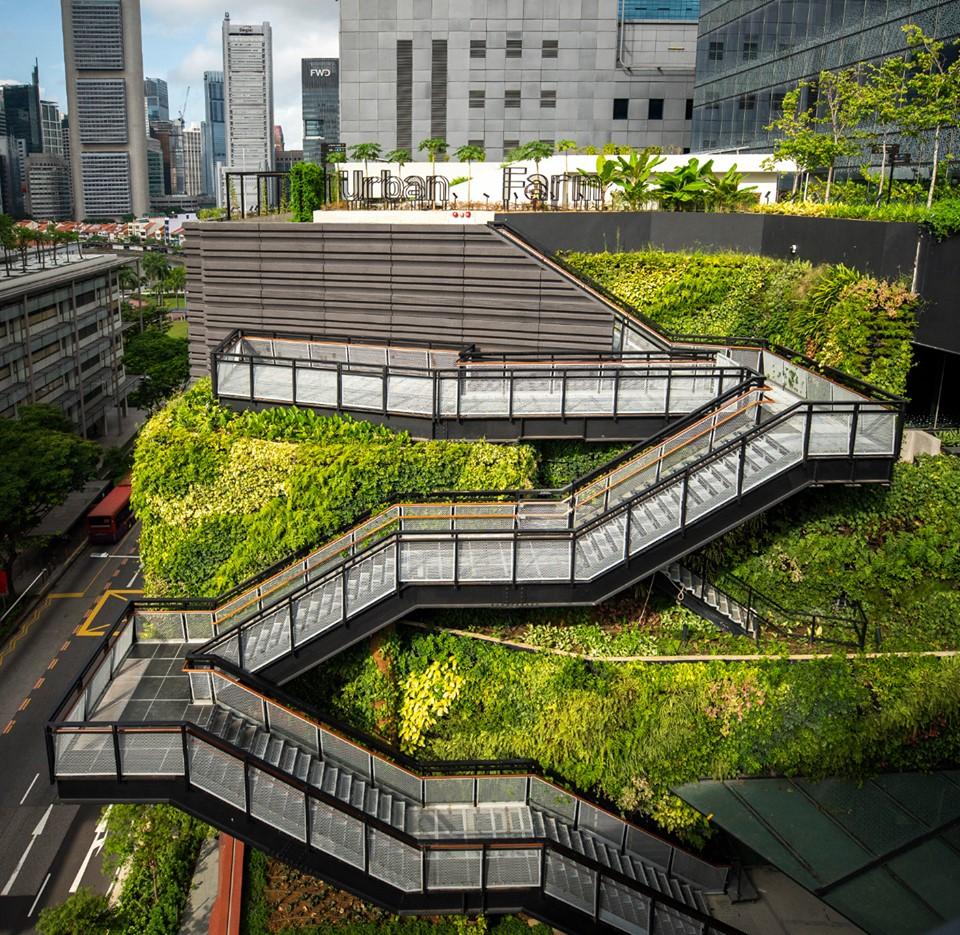 rooftop urban farm new funan mall