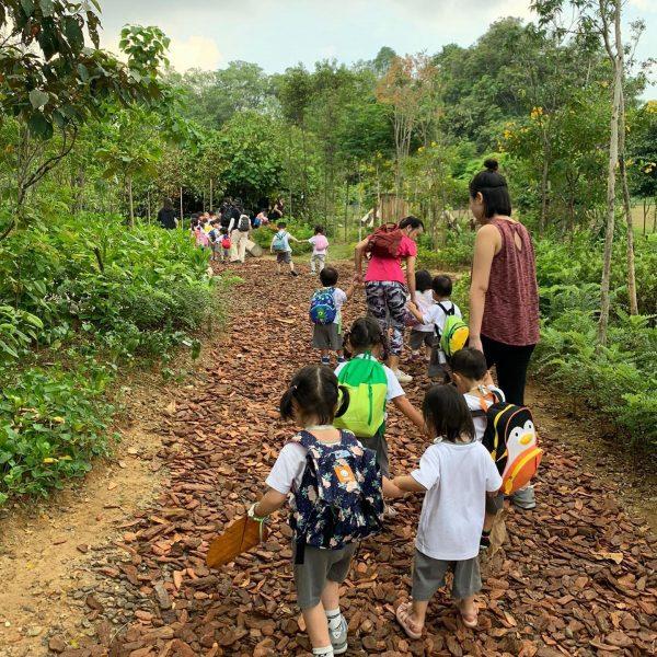 best preschool singapore mahota nature learning