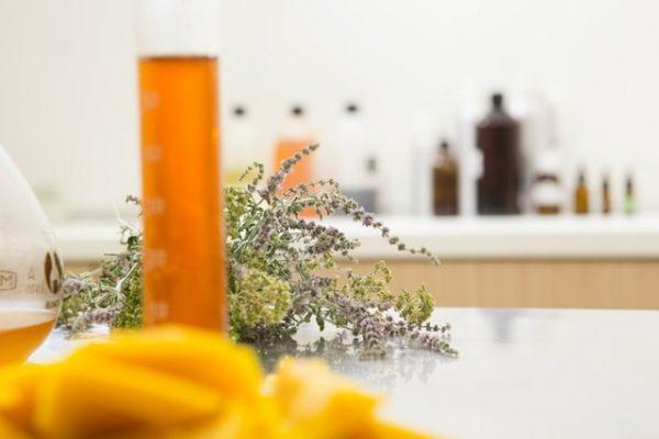 organic skincare singapore explained natural plant