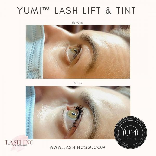 best lash lift singapore lash inc yumi tint treatment
