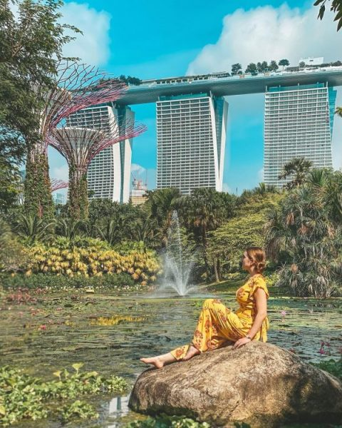 hidden instagram worthy places singapore gardens by the bay victoria lily pond mbs