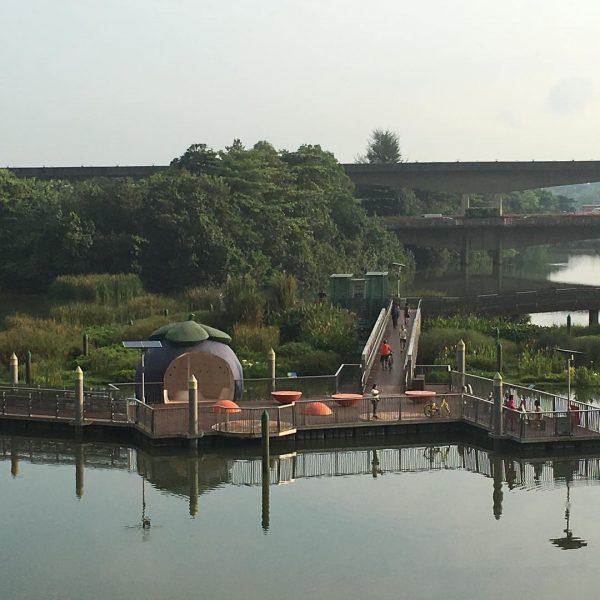 hidden instagram worthy places singapore sengkang wetland floating nature