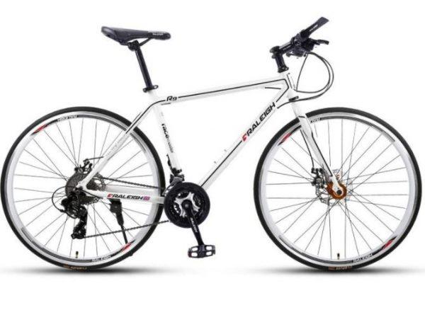 raleigh bikes city bikes singapore