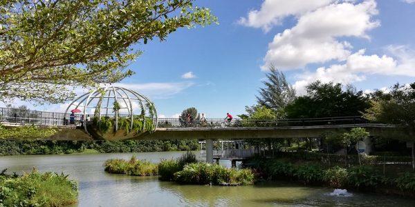 picnic places singapore punggol waterway park nature bridge river