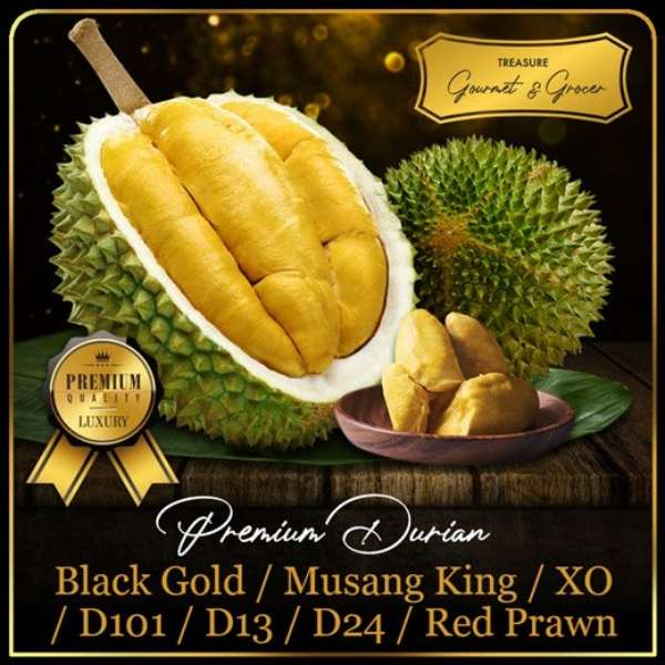 treasure gourmet durian delivery singapore