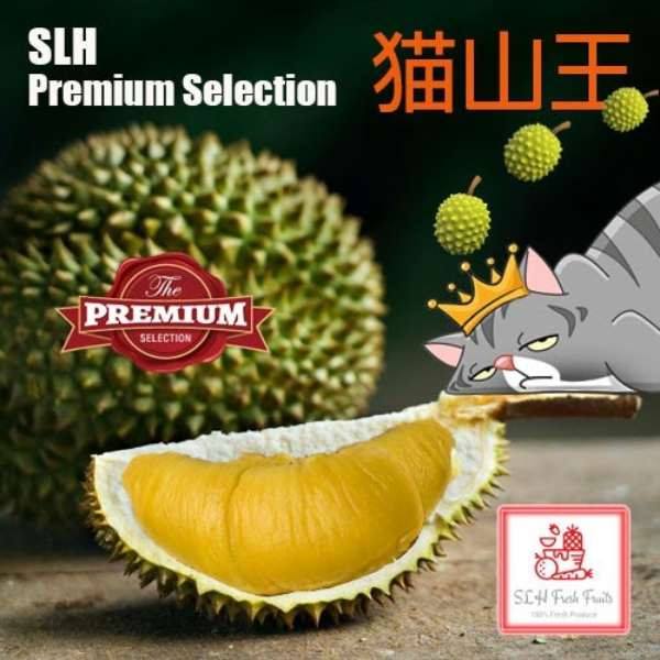 slh durian delivery singapore mao shan wang