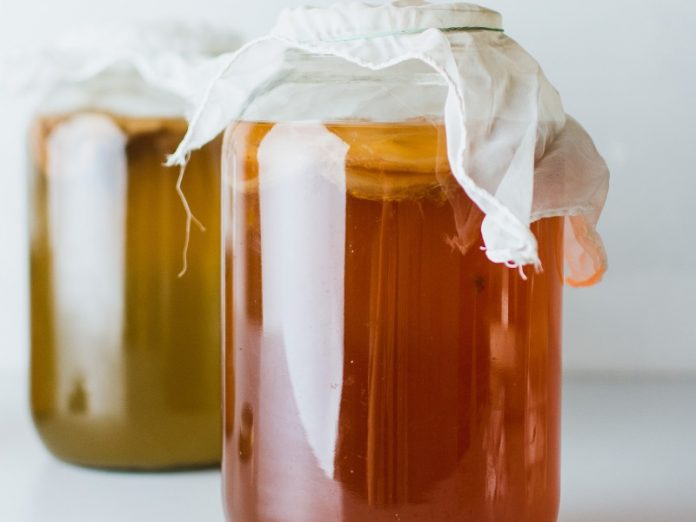 benefits of kombucha drink and where to buy it in singapore