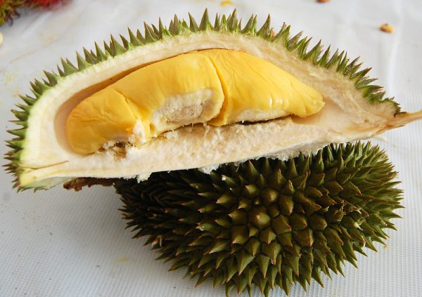 opened durian different types of durians