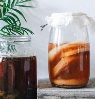 benefits of kombucha drink