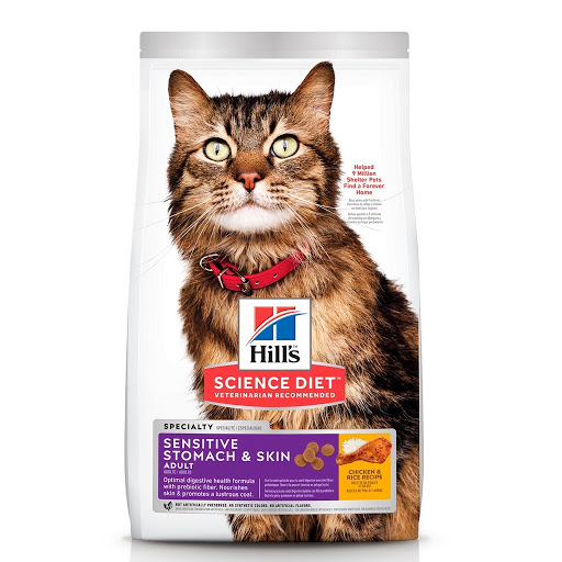 Hill's Science Diet Adult Sensitive Stomach & Skin Dry Cat Food best dry cat food kibbles singapore