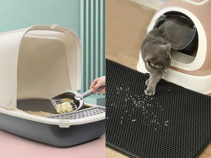 best cat litter singapore tracking clumping