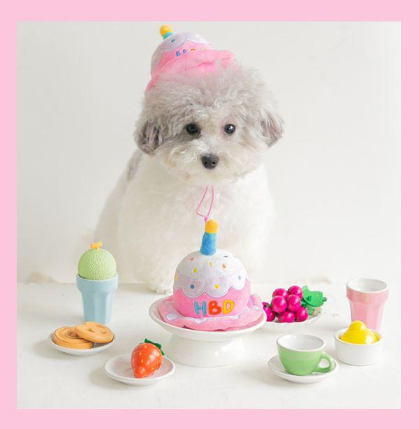 celebrating dog birthday with homemade cake recipe